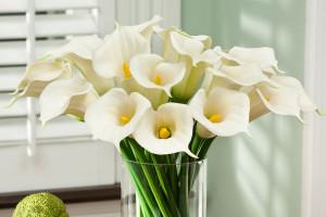 Искусственные цветы: основные критерии выбора>