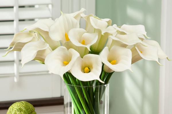 Искусственные цветы: основные критерии выбора