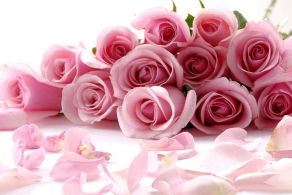 Миллион алых роз: Ваш королевский выбор