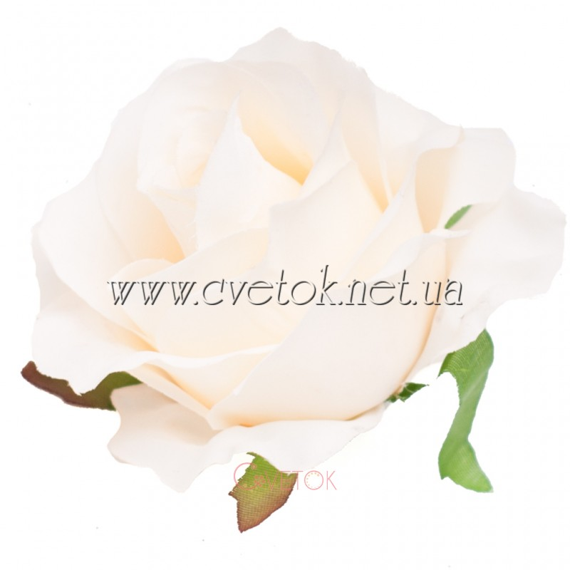 J 010 роза крупная