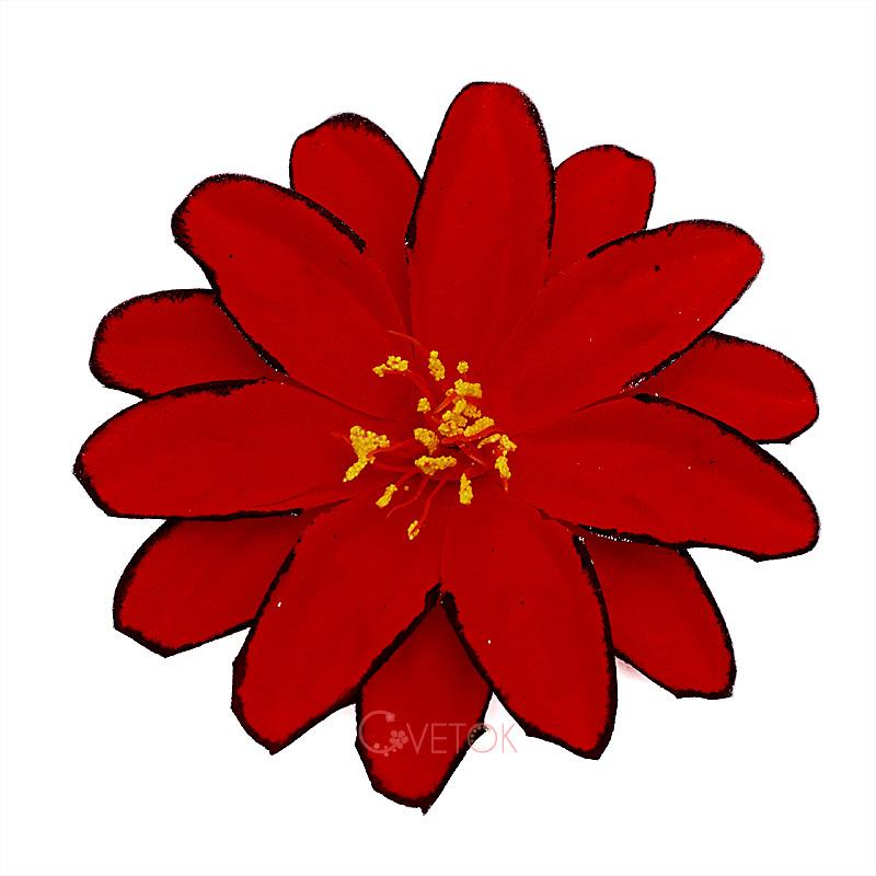 К-6 Голова цветка из бархата
